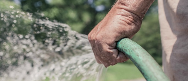 Hand Watering